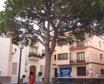 plaza-de-Alfaz-del-pi